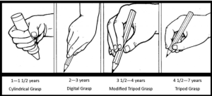 pencil grip stages